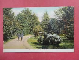SC - South Carolina > Aiken   Scene In Park 1908 Cancel   Ref 935 - Aiken