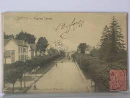(77) - MELUN - AVENUE THIERS - 1905 - Melun
