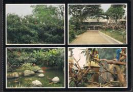 SINGAPORE POSTCARD - Jurong Bird Park, Birds ** - Singapore