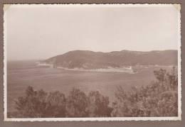 83 - 050513 - PHOTO  1936 - PORT CROS - Panorama - Francia