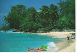 "Amérique-Antilles-LUSCIOS BARBADOS BARBADES (timbre Stamp ""BARBADOS"")(Photo Randy Banfield) - Barbades"