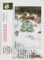 The Fir Tree,China 2005 Birth Bicentenary Of Denmark Fairy Tales Master Hans Christian Andersen Pre-stamped Card - Fairy Tales, Popular Stories & Legends