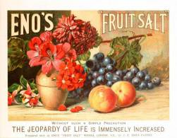 Art Print Reproduction On Original Painting Canvas, New Picture, Eno's Fruit Salt, Advertisement - Posters