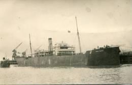 Piroscafo Coltano Del Lloyd Sabaudo - Genova - Passagiersschepen