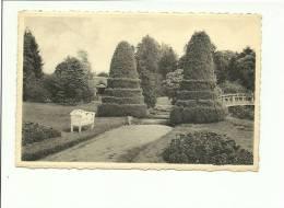 Hoogboom Welvaart Vue Du Parc - Kapellen