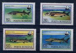 Roumanie ** N° 4200 à 4203 - Poissons - Unused Stamps