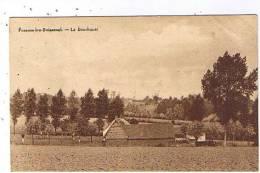 Frasnes-lez-buissenal - Le Bourliquel - Frasnes-lez-Anvaing