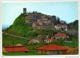 Cartolina Postale Post Card PEGLIO - PESARO (Pesaro Urbino - Marche - Italia Italie Italy Italien) - Viaggiata - Pesaro