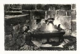 Cp, 15, Chaudes-Aigues, La Source Du Par - Altri Comuni