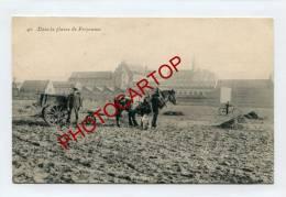 PASSY-FROYENNES-Attelage-Chevaux-Cultivateur-Agriculture-Cloitre-BELGIEN-BELGIQUE - Tournai