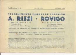 RIZZI, ROVIGO, STABILIMENTO FLOREALE POLESANO, LISTINO PREZZI 1949, Pagg.3 CON ILLUSTRAZIONI - B. Piante Fiorite & Fiori
