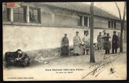 CPA ANCIENNE- FRANCE- ALFORT (94)- ECOLE VETERINAIRE D'ALFORT- LA COUR DU CHENIL- TRES BELLE ANIMATION GROS PLAN - Alfortville