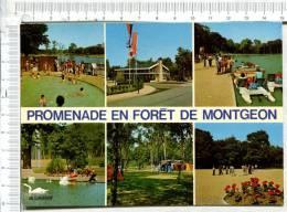 LE HAVRE -  Promenade En Forêt De  MONTGEON -  6 Vues - Le Havre