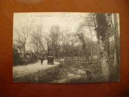 Djidjelli, L'oasis - Cartes Postales