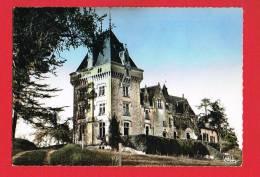 Environs De ST-DENIS-DES-PILES - BONZAC ( Gironde )  Le Château De Payraud - Autres Communes
