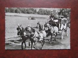 Bad Kissingen Bocklet Pferd Horse And Carriage Caballo Cavallo E Carrozza Coche De Caballos Cheval Et En Voiture - Horses
