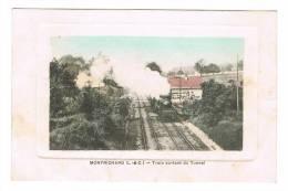 MONTRICHARD  - Train Sortant Du Tunel - Montrichard