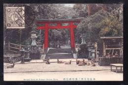 JAP1-55 JAPAN SECOND TRII AT KASUGA SHRINE NARA - Japan