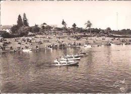 Neuvic D'Ussel: Le Lac Du Barrage Des Plaines: Course De Canoes à Anige, Belle Animation, Années 50 - France