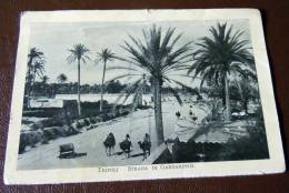 GUERRA ITALO-TURCA LIBIA  FOTO EX LIBRO 1911 -12- TRIPOLI STRADA DI GARGARESCH - Oorlog, Militair