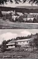 Allemagne (Bade-Wurtemberg- Freiburg I. Br) GASTHAUS  GRUNWALD -LENZKIRCH (Cpsm Année 1952)(besitzer Johanna Mantele) - Freiburg I. Br.