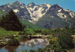 Le Jardin Alpin Au Col Du Lautaret Et Massif De La Meije - France