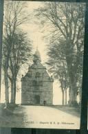 ( Chimay ) Salles - Chapelle N.D. De L'Arbrisseau    Bci118 - Chimay