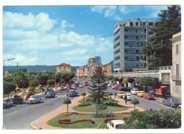 B3141 Arona (Novara) - Lago Maggiore - Viale Repubblica - Auto Cars Voitures / Non Viaggiata - Altre Città