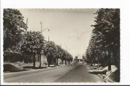 CPSM 95 : FRANCONVILLE - Route Nationale N° 14 - Franconville