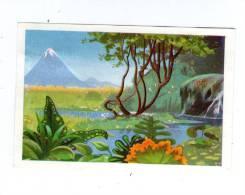 Image , Chocolats Suchard , Au Berceau De La Création , Chap. II , N° 16 , LE PARADIS TERRESTRE - Otros