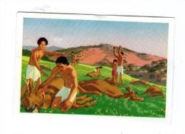 Image , Chocolats Suchard , Histoire D'un Royaume , Chap. IV ,  N° 237 , LA PESTE - Otros