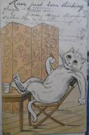 Cat Chat D.M. - Illustratoren & Fotografen