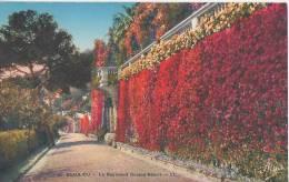 Beaulieu **Belle Carte Plate & Rigide. Ed Adia N°48 - Beaulieu-sur-Mer