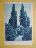 L´Entrée De La Villa Mills. - Roma