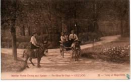 Eeklo Instituut Notre Dame Aux Epines Ezels Anes Donkeys Esel - Eeklo