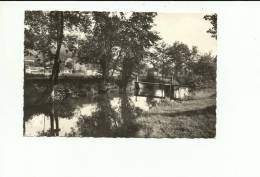 Bauche Evrehailles Le Bocq Au Terrain De Camping - Yvoir