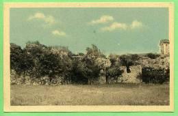 04 PEIPIN - Les Ruines Du Chateau - Frankrijk