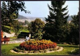 SAINT-MIHIEL - Le Golf - Circulé - Circulated - Gelaufen - 1980. - Saint Mihiel