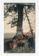 RABOSEE-Tombe D'un Officier Belge-LIEGE-CARTE PHOTO-Periode Guerre 14-18-1WK-BELGIQUE-BELGIEN-Feldpost- - Liege