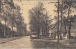 BRUGGE   Baron Ruzettelaan   Tram        Assebroek              Scan 4337 - Brugge