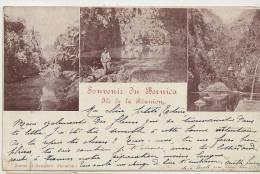 Souvenir Du Bernica Zanon Zampiero Timbrée 1901 2 Timbres Groupe 40 Cts Surchargés 5 C - La Réunion