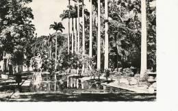 520 St Denis Le Jardin Colonial  Edit Henri Ganowski St Joseph - Saint Denis