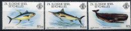 Zil Eloigne SESEL  Seychelles      20/22  **    Poissons/Fishes - Seychelles (1976-...)