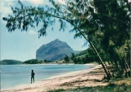 Mauritius - Le Morne Se Cache Derriere Les Filaos De Baie Du Cap - Mauritius