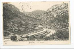 CPA 83 : OLLIOULES - Les Gorges - Ollioules