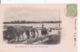 COTE D'IVOIRE 14 MISE A TERRE D'UNE BILLE D'ACAJOU  1904 - Côte-d'Ivoire