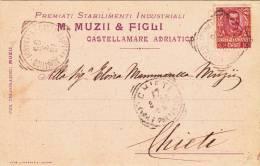 M. MUZII & FIGLI STABILIMENTI INDUSTRIALI CASTELLAMARE ADRIATICO VG 1905  AUTENTICA 100% PUBBLICITA\´ ADVERTISING RECLAM - Reclame