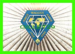 SCOUTS - GUIDES - WORLD ASSOCIATION OF GIRL GUIDES & GIRL SCOUTS - F.J. WARREN LTD - - Scoutisme