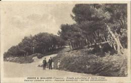 MONTE S. GIULIANO - TRAPANI  -  SIC138 - Trapani