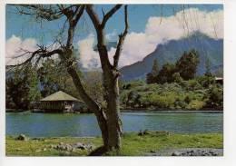 REF 119 : CPM Ile De La Réunion Cilaos Bordure Du Lac - Autres